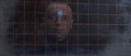 Renard et la vitre pare-balles