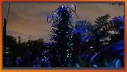 EpisothBioluminescence