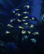 Delta Tree Bioluminescence
