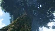 Hometree 3 HD