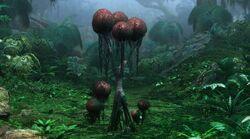 Puffball Tree.jpg
