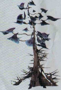 Unidelta tree.jpg