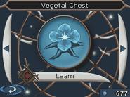 VegetaChest