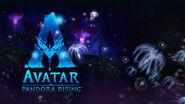 Avatar-Logo-VB