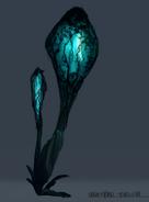 Veinpod Bioluminescence