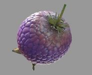 Yovo-Fruit