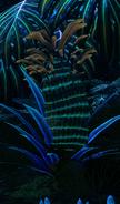 Pineapple Plant Bioluminescence