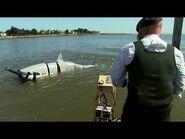 Shark-Attack Defenses - MythBusters Jawsome Shark Special -- Shark Week