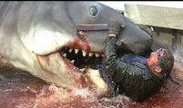 Jaws Quints Death.jpg