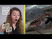 Never Seen Jaws- People React to 'Jaws' For the First Time - NowThis