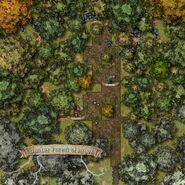 Amber Forest of Arden.v3