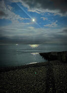 48. The Shadow of Cometan