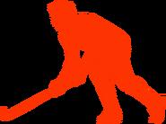 Grass hockey