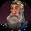 Snorri256.png
