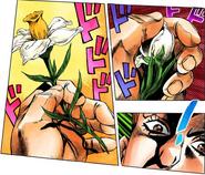 GE lighter flower
