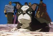 Iggy OVA