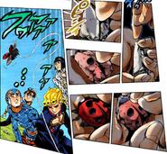 RockLadybug