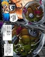 Koichi luggage gradually changing