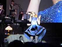 Joey UK Concert 13