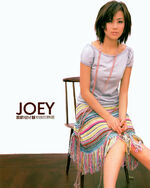 Joey LoveJoey2 Outer Cover Front.jpg