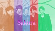 Editied photo of arashi sakura