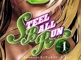 Lista de capítulos de Steel Ball Run