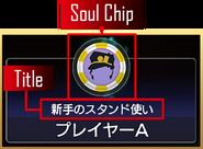 LS ChipTitleDisplay