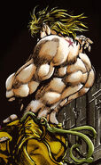 DIO Shadow SC Infobox Manga