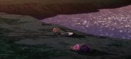 Pesci Corpse