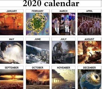 2020 Disaster Calendar Meme.jpg