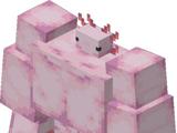 Buff Axolotl (Minecraft)