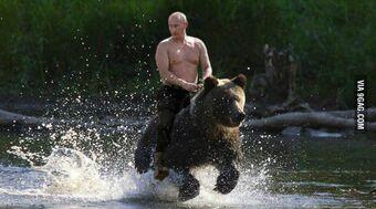 Vladimir Putin Joke Battles Wikia Fandom