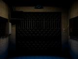 Cargo Area Elevator