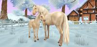 Koń luztytański - cremello