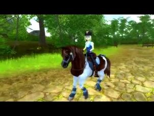 Star_Stable_World_-_Chincoteague_Pony