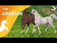 Meet the UPDATED Arabians! 😍🐎⚡ - Star Stable Breeds
