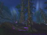 Drzewo Strażnika
