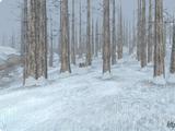 Dolina Zamarzniętej Mgły