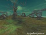Antyczne Drzewo