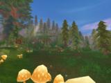 Leśnicy