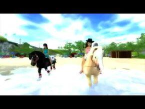 Star_Stable_World_-_Jorvik_Pony
