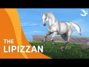 Meet the Lippizan Horse ✨🏇 - Star Stable Breeds