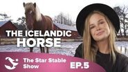 The Making of the Icelandic Horse The Star Stable Show 1