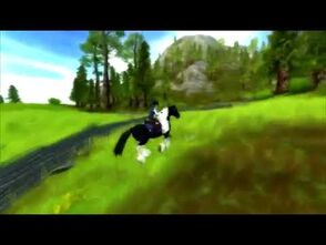 Star_Stable_World_-_Tinker_Horse