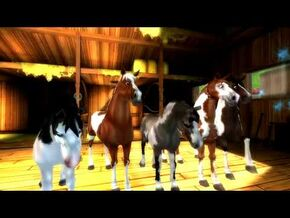 Star_Stable_World_-_American_Paint_Horse