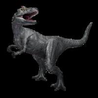 Allosaurus1