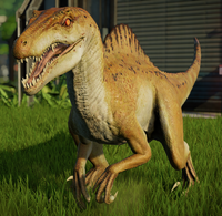 SDWSpinoraptor