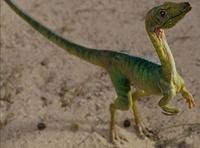 JWBCompsognathus