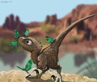 Baby raptor