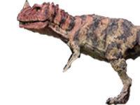 Ceratosaurus jurassic park III-1-